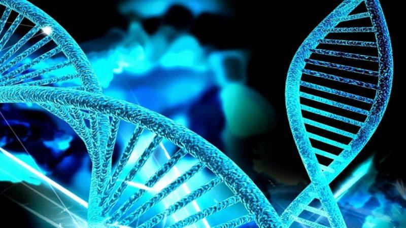 genetica-960x623